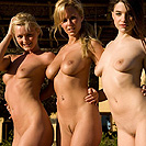 http://www.nextdoormania.com/femjoy-jane-sabina-olivie.php